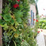 mur_vegetal_2